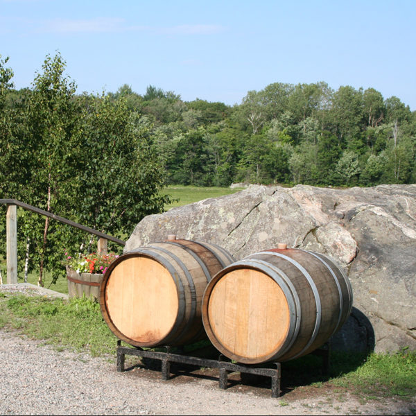 french oak wine barrels in front of a granite rock