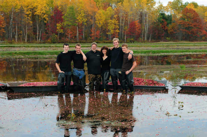 parents and four sons standing in flooded cranberry bog