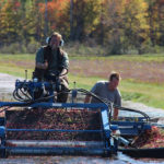 cranberry picker with farmer giving a thumbs up
