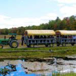 tractor pulled wagon on cranberry dike