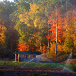 wooden bridge with fall trees behind and sprinklers running in front