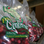 bags of fresh johnston cranberries