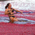 woman wakeboarding through floating cranberries