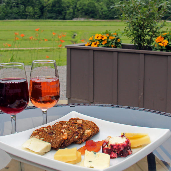 cheese plate and two glasses of wine on an outdoor patio table