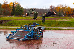 2 boys doing backflips off johnstons cranberry picker into water