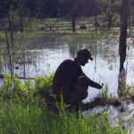 nature guide crouching beside a wetland pointing out a feature