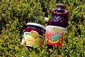 Mrs. J's Cranberry Sauce and Johnston's Pure Cranberry Juice lying in cranberry vines