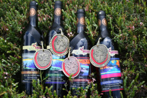 picture of four bottles of Muskoka wine with four medals