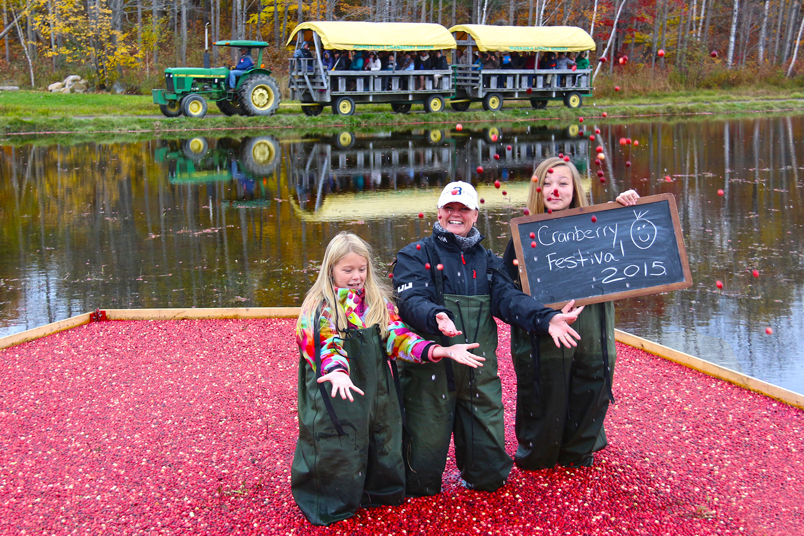 family tossing cranberries standing in floating cranberries with wagon in background