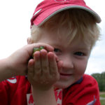 boy holding a frog between his hands