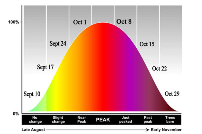 diagram predicting the timing of changing fall colours