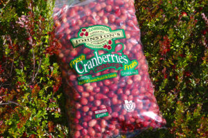 bag of Johnston's fresh cranberries lying on cranberry vines