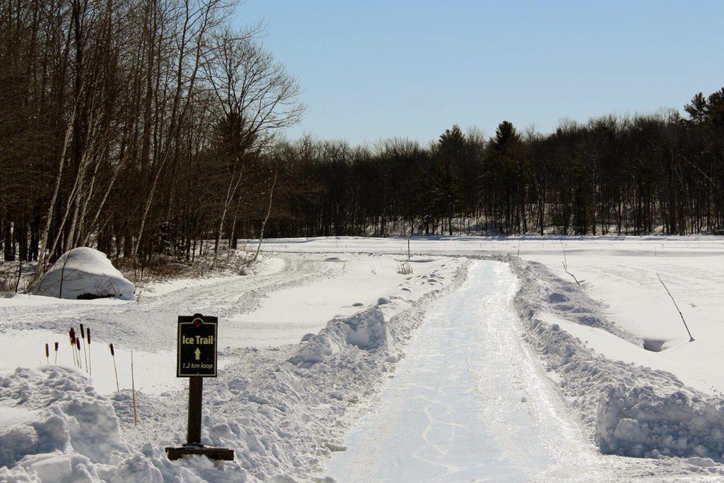 ice trail at Johnston's Cranberry Marsh in Bala, Muskoka, Ontario