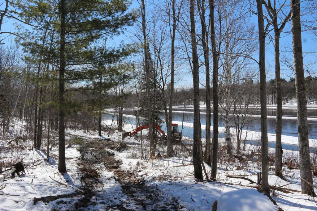 excavator digging stumps out of a trail at Johnston's Cranberry Marsh in Bala, Muskoka, Ontario
