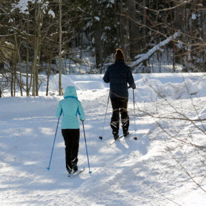 two people x-country skiing at Johnston's Cranberry Marsh in Bala, Muskoka, Ontario