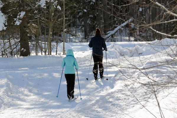 two people x-country skiing at Johnston's Cranberry Marsh in Bala, Muskoka, Ontario