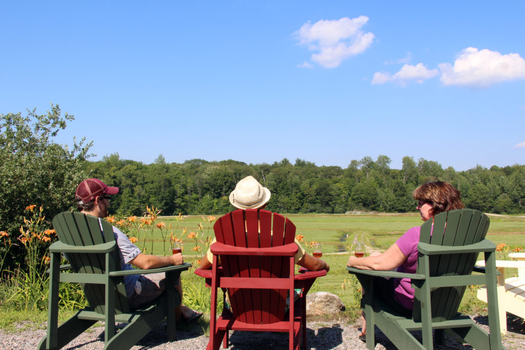 People in muskoka chairs over looking cranberry marsh with a glass of wine