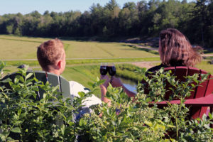 couple in Muskoka chairs drinking blueberry wine on top of blueberry hill