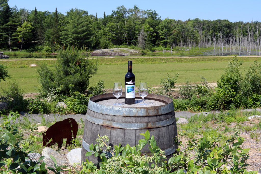 bottle of blueberry wine with two glasses on a wooden barrel overlooking blueberry fields