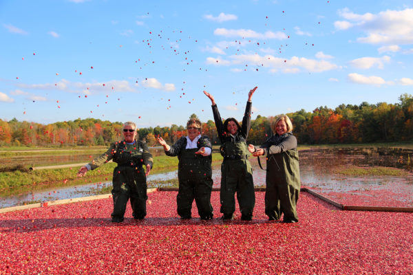 four women standing in floating cranberries and throwing them in the air