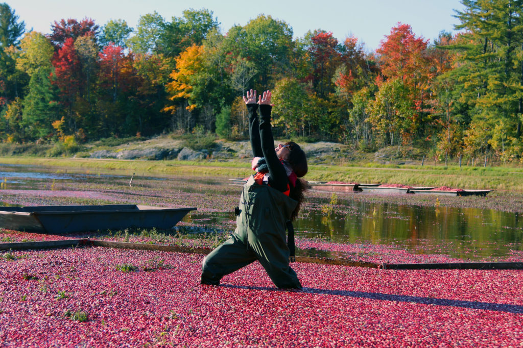 woman in cranberries doing a yoga pose
