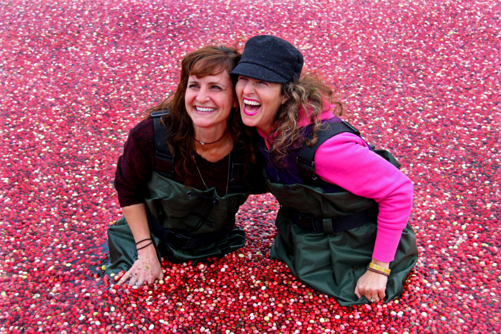 two women laughing as they kneel in cranberries