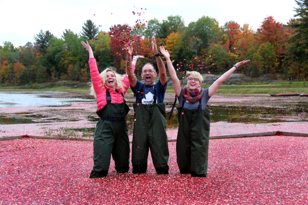 parents and daughter standing in floating cranberries laughing and throwing cranberries in the air