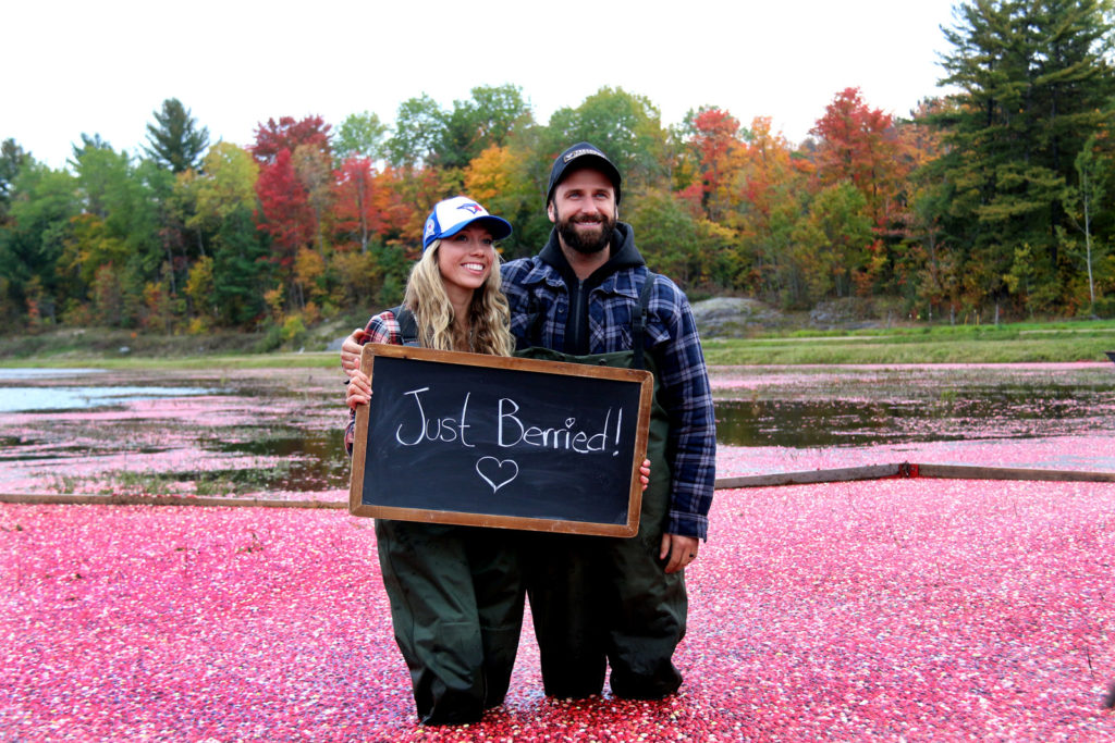 couple smiling and standing in cranberries holding up a 'just berried' sign