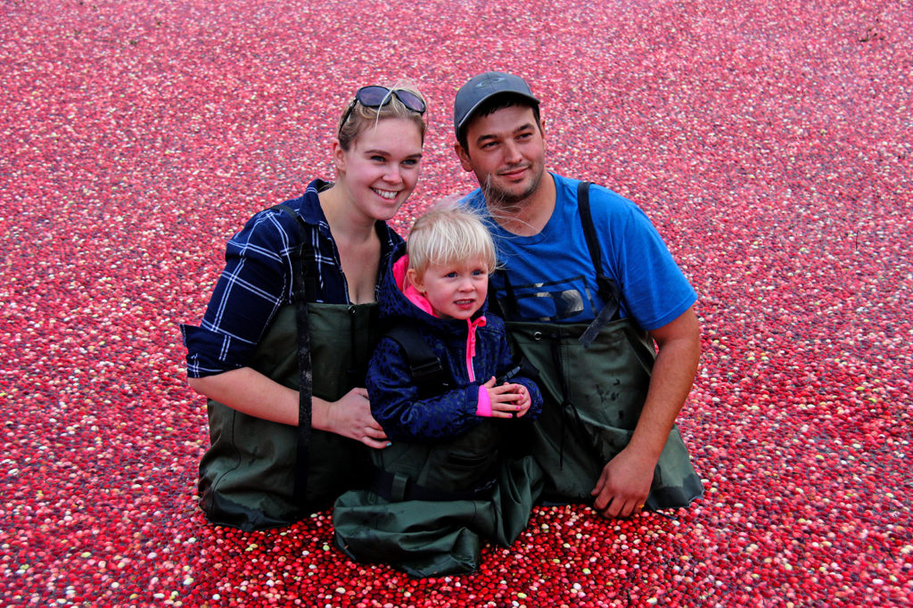 couple with their little girl smiling in cranberries