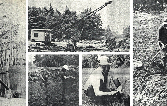 historical photos of developing iroquois cranberry growers