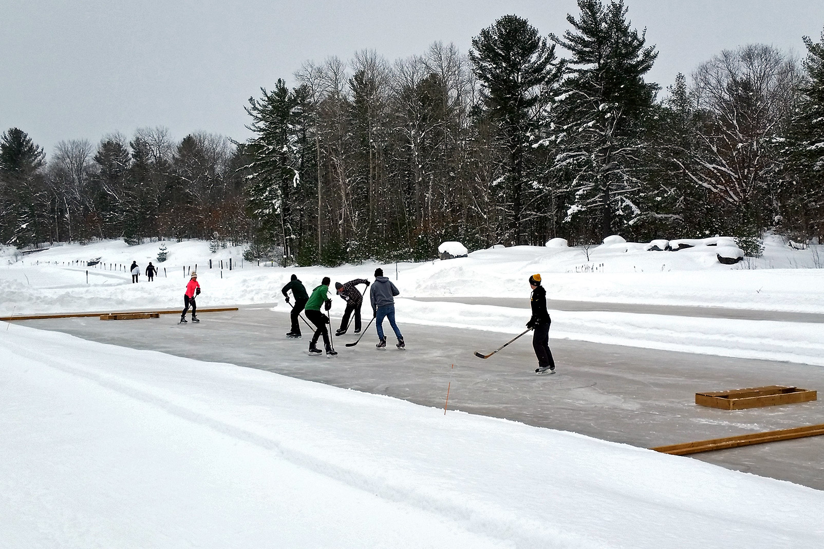 Pond Hockey Or Bog Hockey Muskoka Lakes Farm Amp Winery