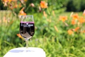 glass of muskoka lakes wine on the arm of a muskoka chair