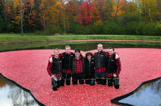 johnston family in cranberries at muskoka lakes farm & winery