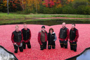 johnston family in cranberries at muskoka lakes farm & winery