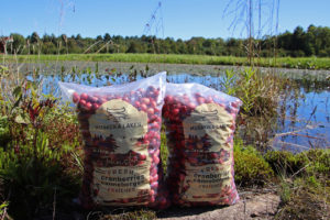 fresh cranberries at muskoka lakes farm & winery in bala ontario