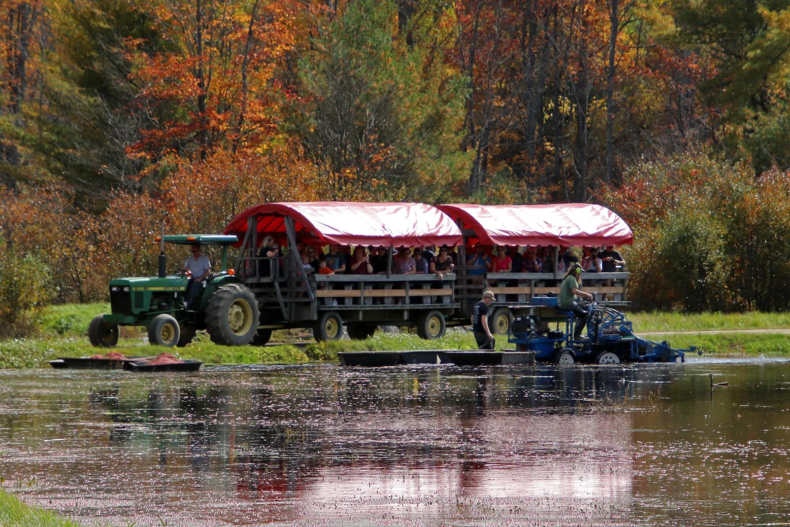 Wagon Tour Weekdays Muskoka Lakes Farm Winery