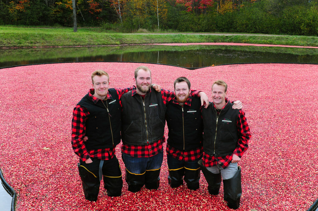 four johnston brothers in the cranberry plunge at muskoka lakes farm and winery