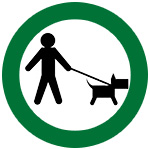icon with person holding leashed pet